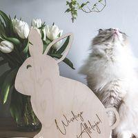 Zając Wielkanocny ♡  ________________________________________ #wielkanocnedekoracje #wielkanoc #wielkanocneinspiracje #easter #easterdecor #jajka #zające #rodzina #bliskość #miłość #wielkanocnystół #wielkanocneozdoby ♡